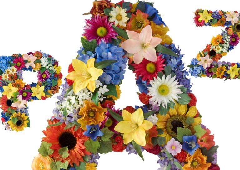 paz flores1